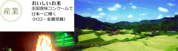 おいしいお米:全国食味コンクールで日本一に輝く(H22・金賞受賞)