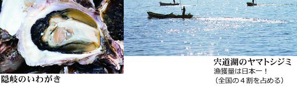 宍道湖のヤマトシジミ:漁獲量は日本一!(全国の4割を占める)