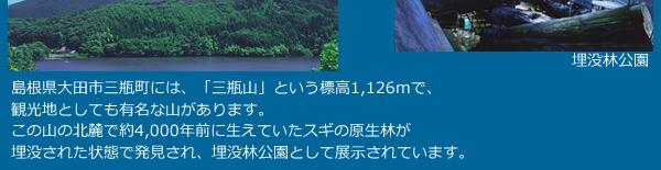 島根県大田市三瓶町には、「三瓶山」という標高1,126mで、観光地としても有名な山があります。この山の北麓で約4,000年前に生えていたスギの原生林が埋没された状態で発見され、埋没林公園として展示されています。