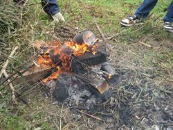 木材資源等利用活動