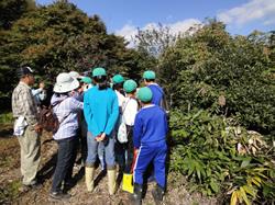 邑南町立高原小学校:森とのふれあい活動