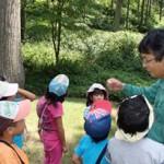 こばと保育園:森とのふれあい活動