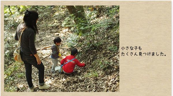 峯寺 遊山荘:森とのふれあい活動