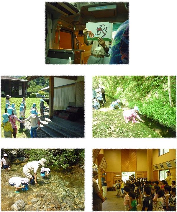 葵保育園、まるに保育所、豊川保育園