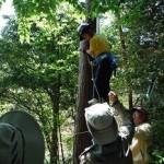 「2017森の誕生日」実行委員会