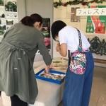 山陰中央新報社