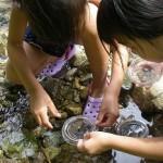 窪田小児童クラブ 開催年月日:令和1年7月29日