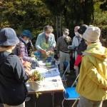 「盆栽」を体験する会