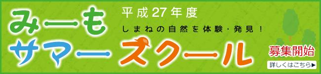 2015-summerschool-top-b